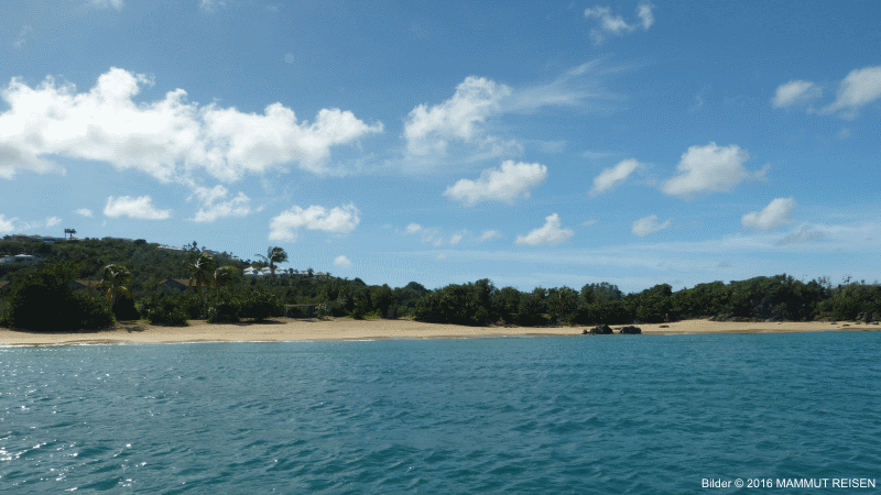 Knallerpreis auch bei Royal Caribbean Cruise Line