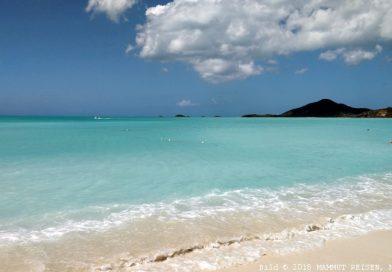 Ab in die karibische Sonne, inkl. Flüge!
