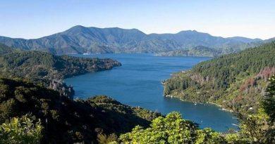 Neuseeland intensiv, auf Kreuzfahrt, erleben im Frühjahr 2021